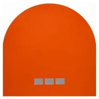 "Tangerine 3, 2013 acrylic paint on paper 12"" x 12"""