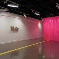 What You Dance Like, 2016, vinyl curtain, adhesive vinyl, room size: 9x16x35 feet